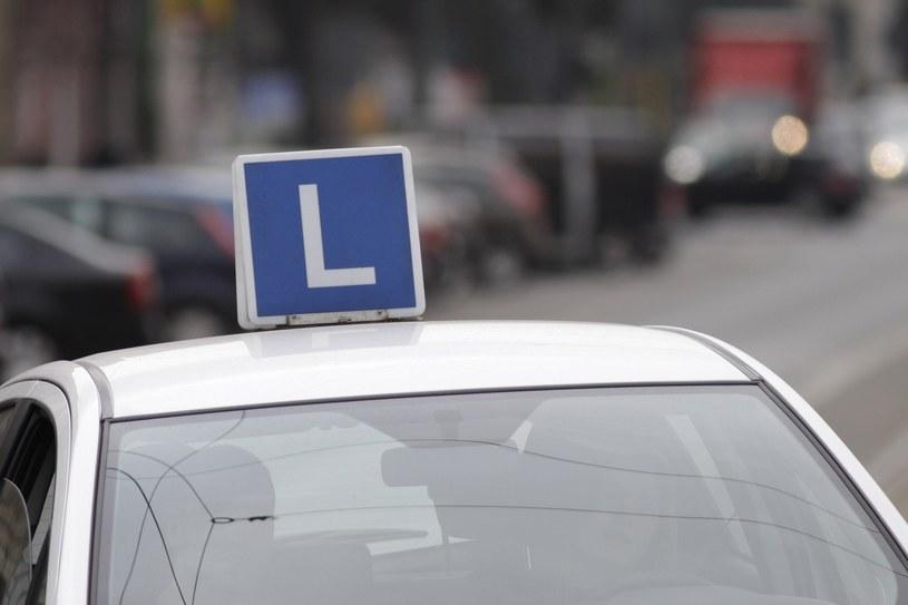 Sprawca zaatakował... samochód egzaminacyjny /Adrian Ślazok /Reporter