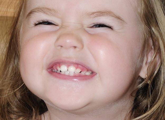 Sprawdź, jak prawidłowo dbać o zęby dziecka /123RF/PICSEL