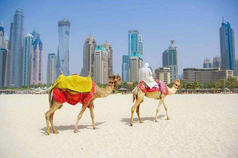 Sprawdź, jaki naprawdę jest Dubaj /123RF/PICSEL