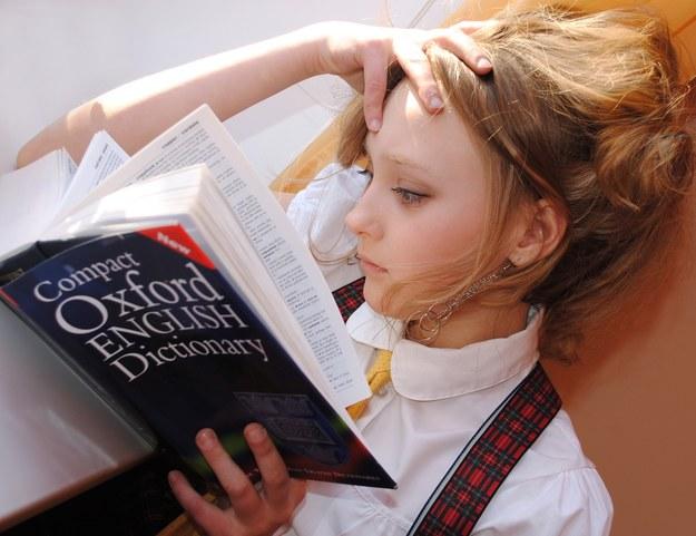 Sprawdź swoją wiedzę z języka angielskiego! /pixabay.com /