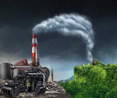 Springmann: Zachód przejada cele klimatyczne
