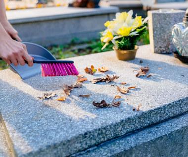 Sprzątanie nagrobków: Jak wyczyścić pomnik, żeby go nie uszkodzić?