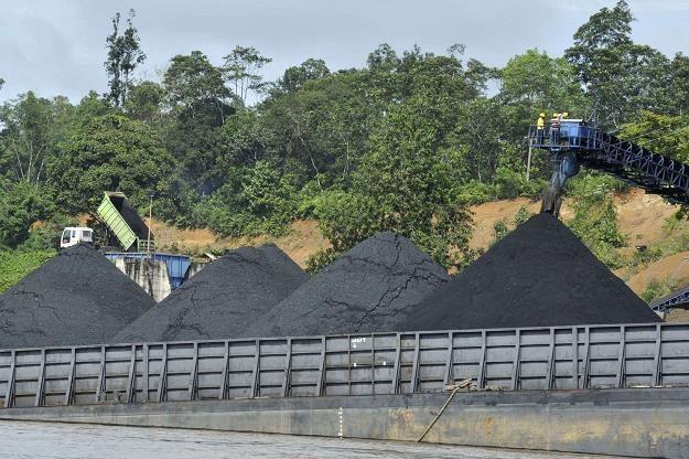 Sprzedawcy węgla boją się kontroli? /AFP