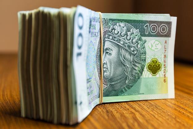 Średnia dotacja unijna dla przedsiębiorcy indywidualnego to 215 tysięcy złotych /©123RF/PICSEL