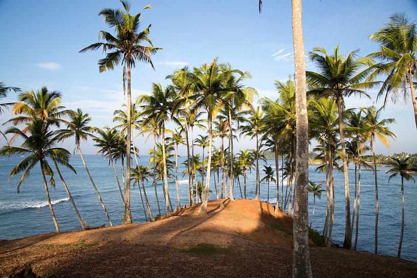 Sri Lanka ponownie otwiera się na turystów / GeographyPhotos/Universal Images Group  /Getty Images