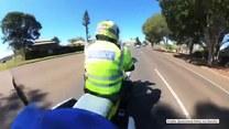 Sroka zaatakowała policjanta na motocyklu