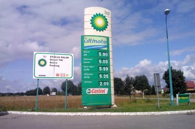 Stacja niedaleko Kościerzyny. Ceny przyprawiają o zawrót głowy /INTERIA.PL