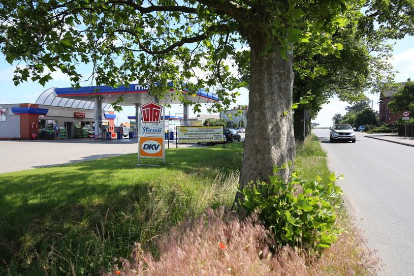 Stacja paliw w Dobrzycy pod Pleszewem, gdzie doszło do napadu. /Tomasz Wojtasik /PAP