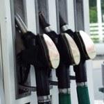 Stacje paliw: Niezależni i zatroskani