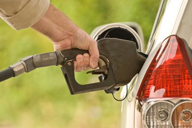 Stacje wcale nie cieszą się z wysokich cen paliw /