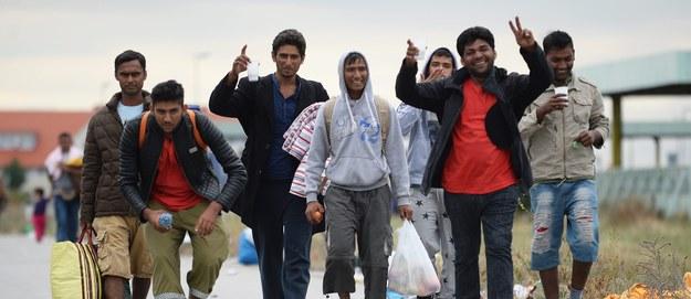 Stanczewski: Nie ma żadnego programu integrującego imigrantów ze społeczeństwem europejskim