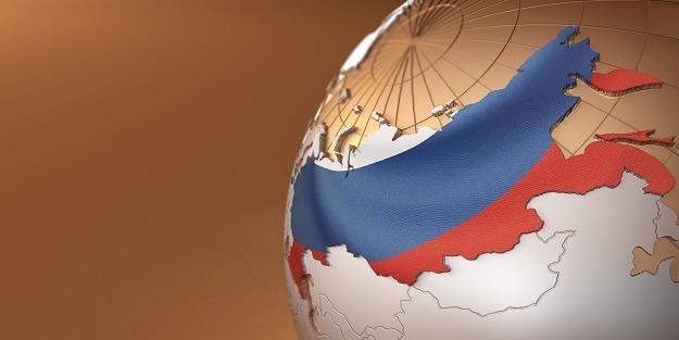 Stany Zjednoczone i Unia Europejska nie będą mogły sprzedawać mięsa do Rosji w 2016 roku /©123RF/PICSEL