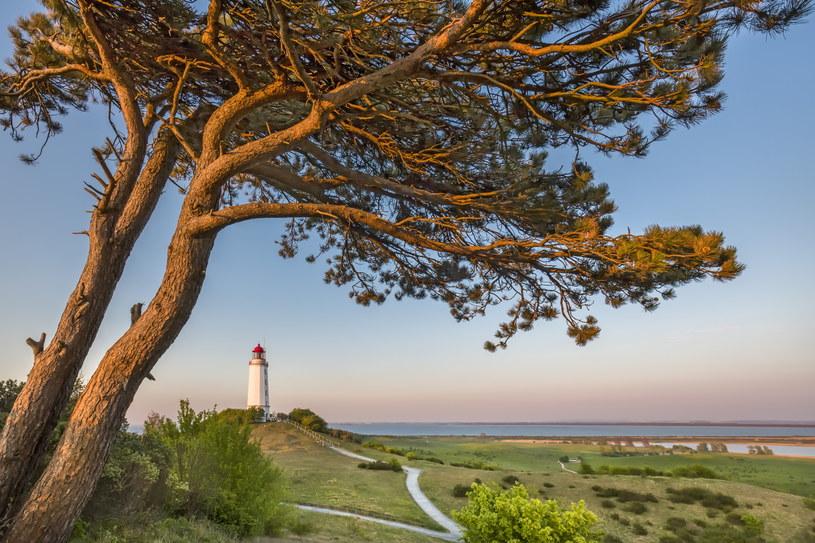 Stara latarnia morska, wysokie łąki, ciągnące się kilometrami plaże i kwitnący rokitnik - oto Hiddensee w całej swojej okazałości /fot. Sabine Lubenow/DZT /materiały promocyjne