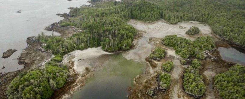 Starożytna wioska odkryta na kanadyjskiej wyspie Fot. Grant Callegari/Hakai Institute /materiały prasowe