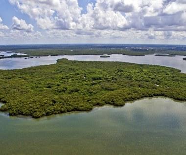 Starożytne cywilizacje budowały sztuczne wyspy