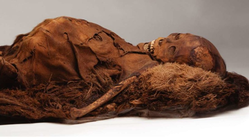 Starożytni Inuici zdrowo się odżywali, a i tak cierpieli z powodu miażdżycy Fot. Wan Et At Al /materiały prasowe