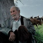 Stary człowiek i... metempsychoza