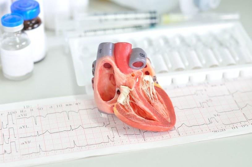 Statyny mają znaczenie w zapobieganiu chorób układu sercowo-naczyniowego /123RF/PICSEL