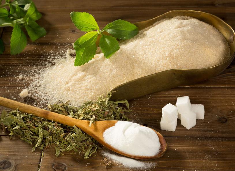 Stewia może z powodzeniem zastąpić cukier /123RF/PICSEL
