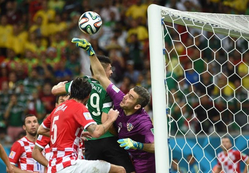Stipe Pletikosa zakończył reprezentacyjną karierę /AFP