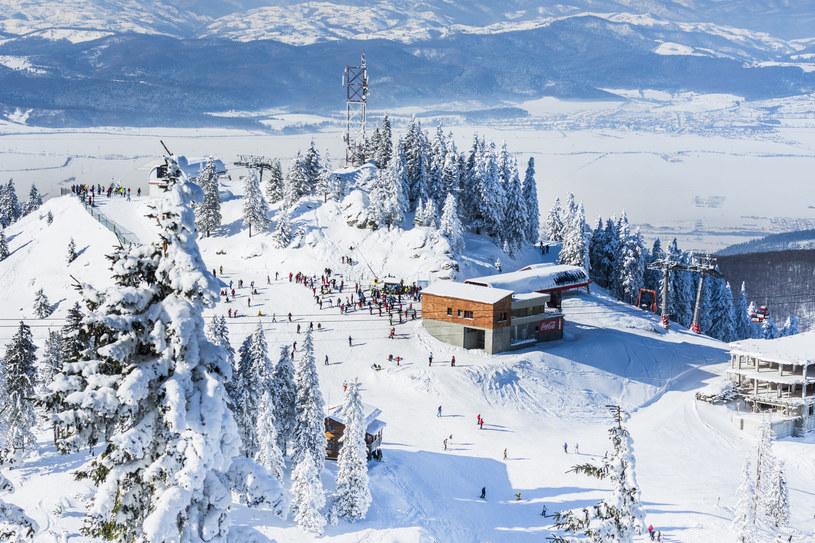 Stok narciarski Poiana Brasov /123RF/PICSEL