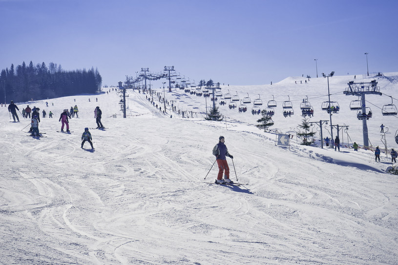 Stok narciarski, zdjęcie ilustracyjne /Dariusz Zarod /East News