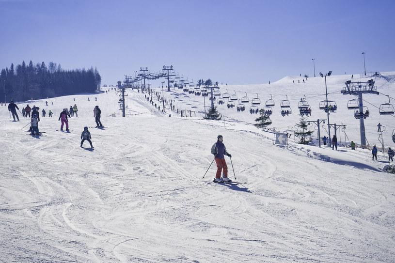 Stoki narciarskie zostaną ponownie otwarte, zdjęcie ilustracyjne /Dariusz Zarod /East News