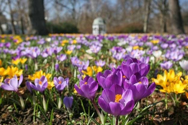 """Stosowanie czasu letniego pozwala wiosną, latem i wczesną jesienią na """"przedłużenie"""" dnia o godzinę /AFP"""