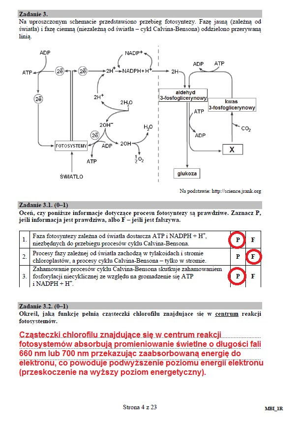 str. 4 /CKE /INTERIA.PL