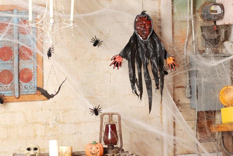Straszna dekoracja domu to podstawa! /materiały prasowe