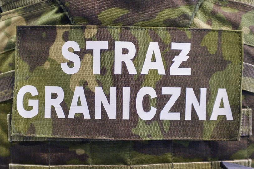Straż graniczna zlikwidowała nielegalną krajalnię tytoniu /Łukasz Dejnarowicz /Agencja FORUM