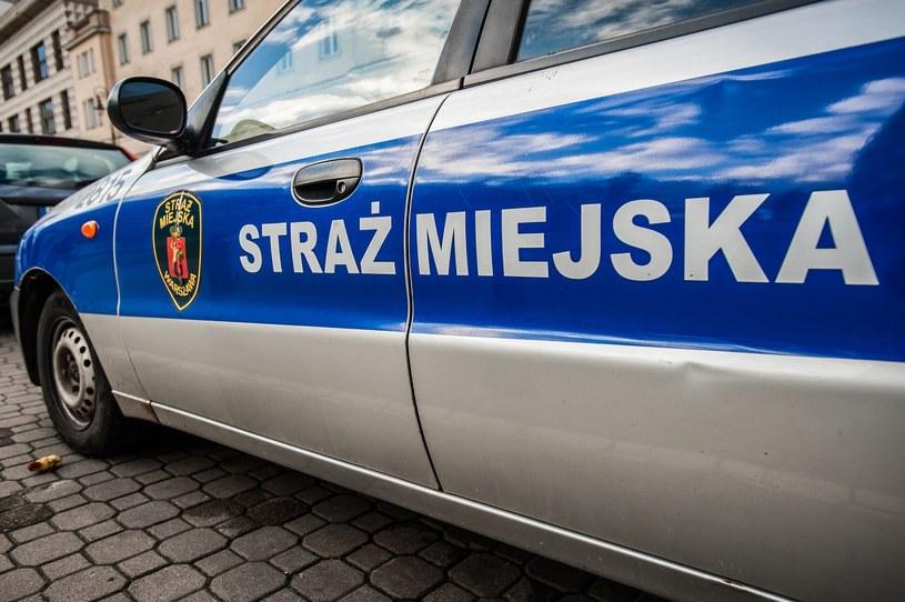 Straż miejska skupia się na akcjach przeciw kierowcom / Fot: Karol Makurat /Reporter