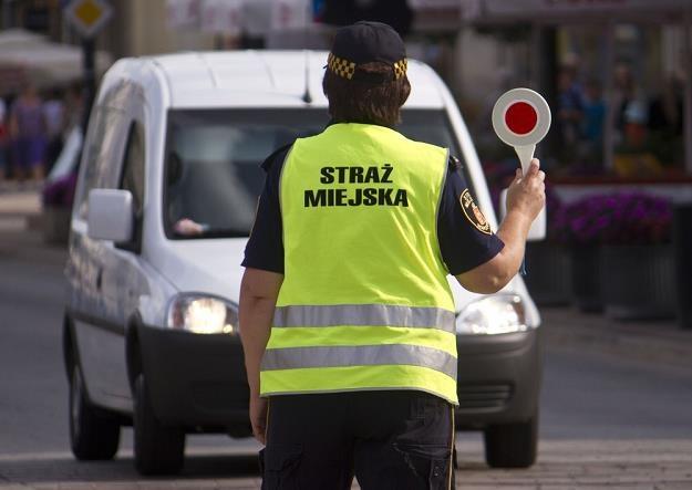 Straż nie będzie mogła karać kierowców? / Fot: Krystian Dobuszyński /Reporter