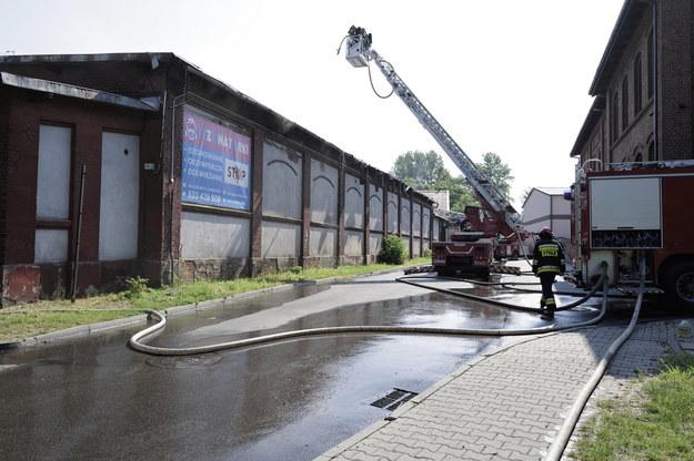 Strażacy podczas akcji gaszenia pożaru hali magazynowej i warsztatu samochodowego przy ul. Piotra Skargi w Chorzowie /Andrzej Grygiel /PAP