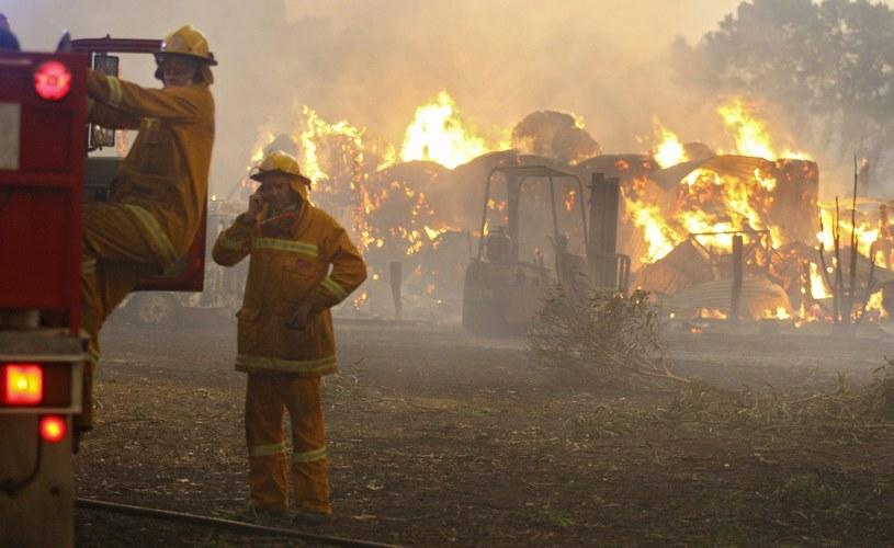 Strażacy podkreślają, że warunki, w ktorych prowadzona jest akcja gaszenia, są ekstremalne /AFP