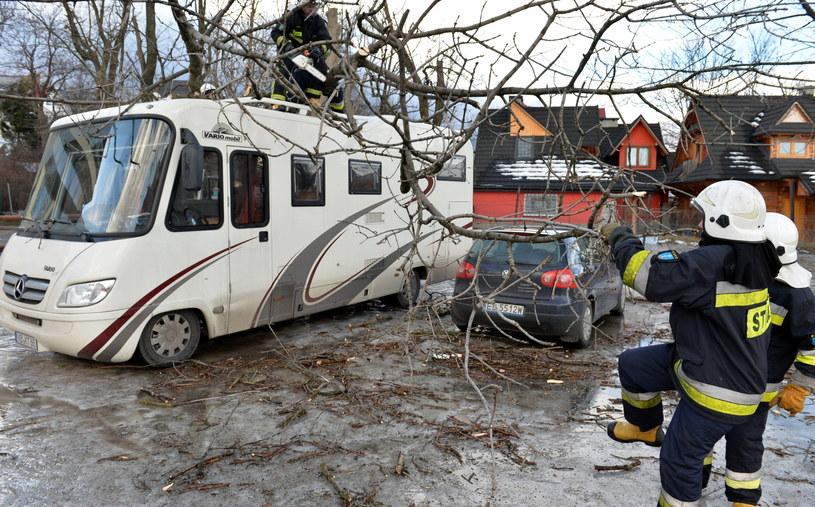 Strażacy pracują przy usuwaniu drzew powalonych przez wiatr w Zakopanem /Grzegorz Momot /PAP
