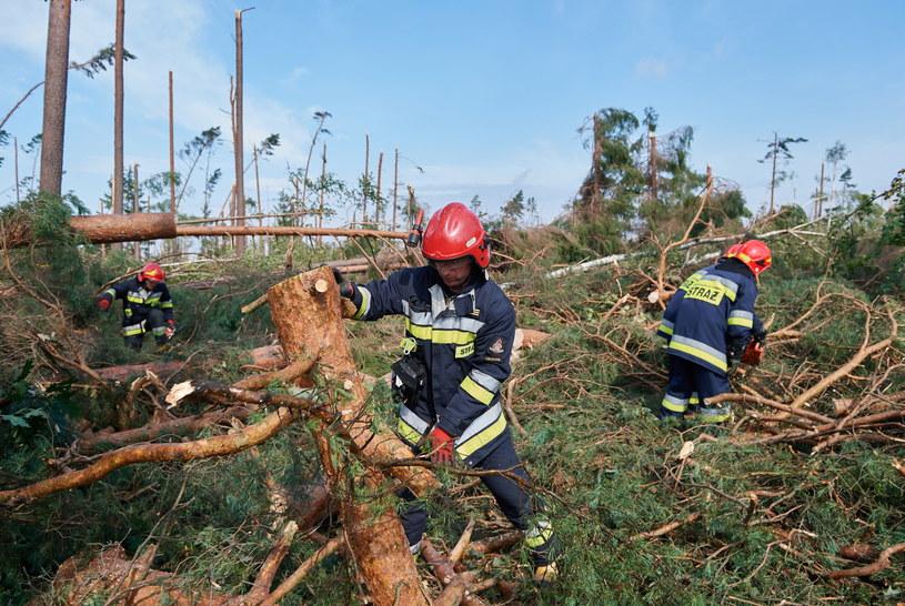Strażacy usuwają szkody po nawałnicy w miejscowości Rytel (woj. pomorskie) /Adam Warżawa /PAP