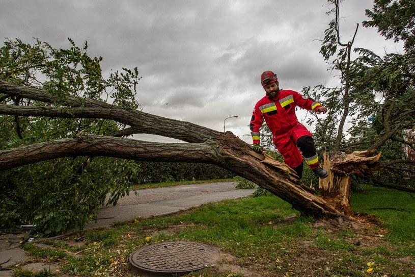 Strażacy usuwają zniszczenia po wichurze (arch.) /Magdalena Pasiewicz /East News
