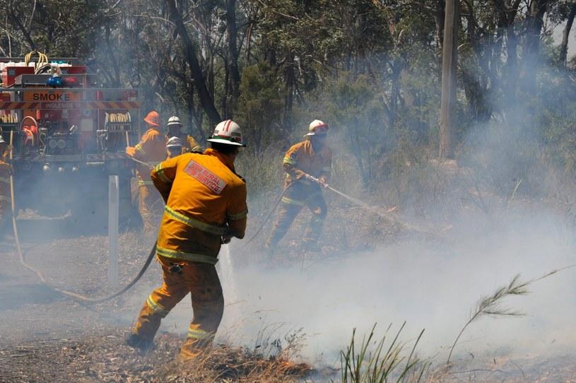 Strażacy walczą z ogniem /PAP/EPA