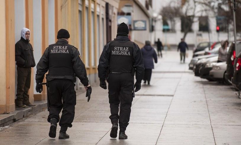 Strażnicy miejscy w sumie usłyszeli ponad 100 zarzutów (zdjęcie ilustracyjne) /Michał Kość /Reporter