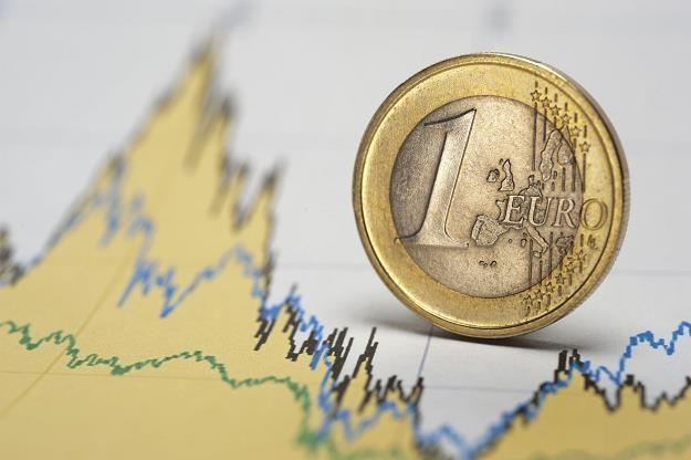 Strefa euro będzie miała odrebny budżet? /©123RF/PICSEL