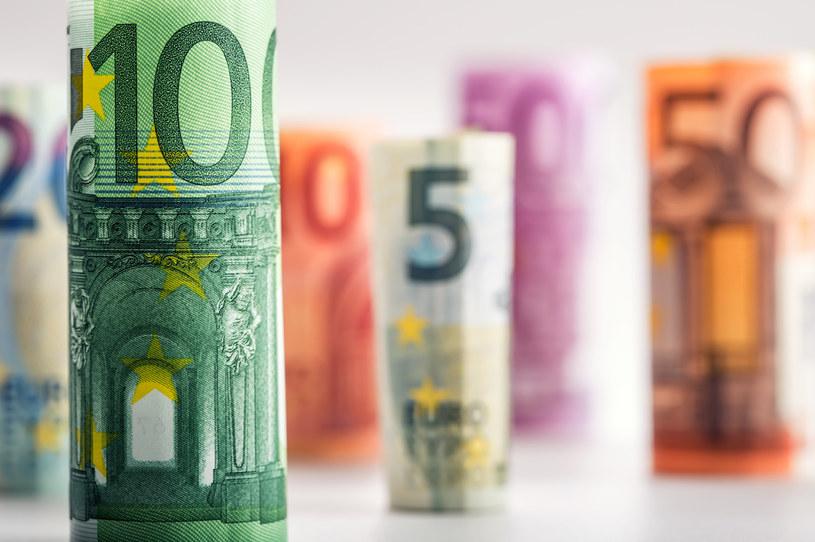 Strefa euro coraz bardziej zadłużona /123RF/PICSEL
