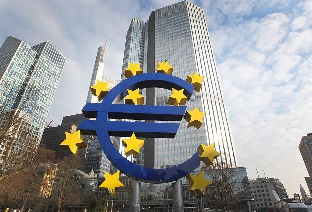 Strefa euro kwitnie. Siedem krajów z nadwyżką budżetową /AFP