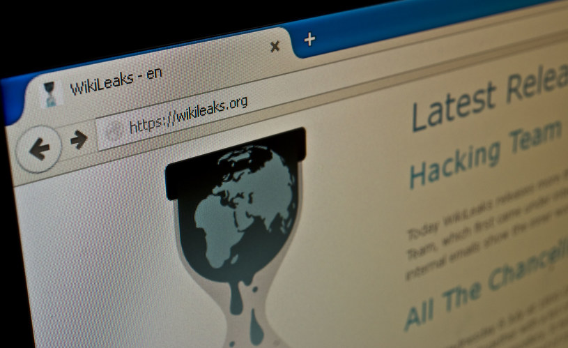 Strona główna portalu WikiLeaks /123RF/PICSEL