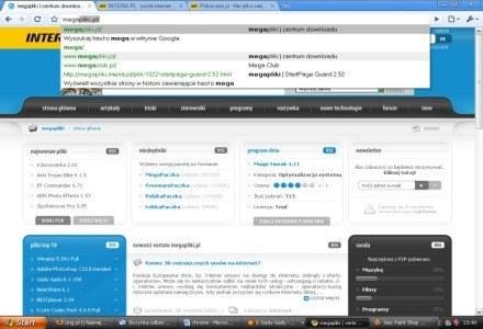 Strona megapliki w przeglądarce Google Chrome /INTERIA.PL