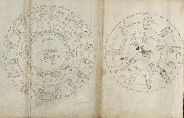 Stronica Manuskryptu Voynicha /MWMedia
