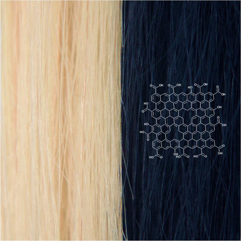 Struktura grafenowego barwnika do włosów (po prawej) /Chong Luo /Materiały prasowe