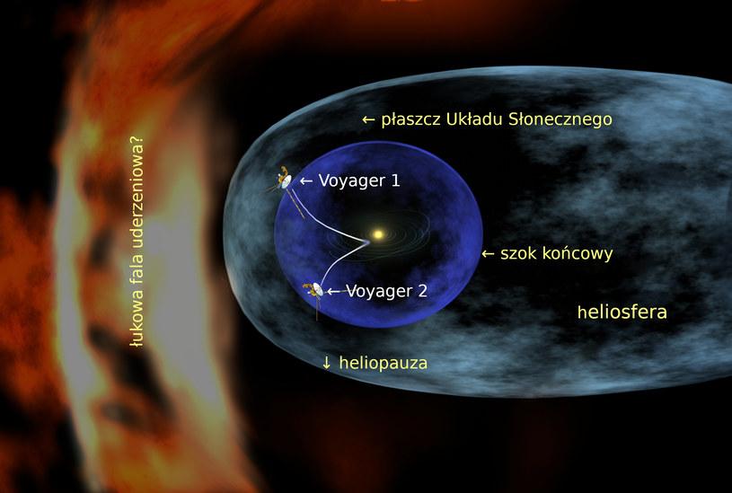 Struktura heliosfery. Fot. Wikipedia /materiały prasowe