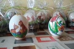 Strusie znoszą ok. 50 jaj rocznie