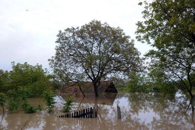 Struzik podziękował wszystkim osobom i służbom zaangażowanym w walkę z powodzią /AFP